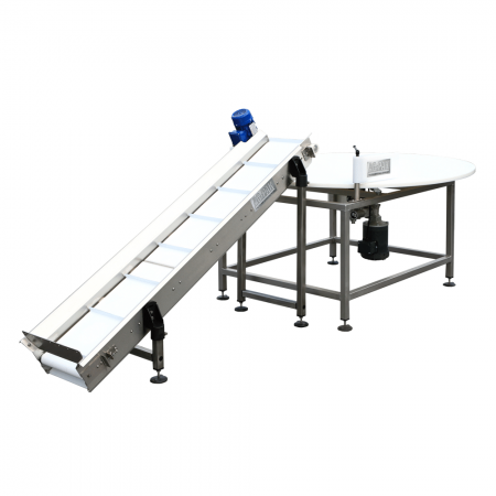 Ag-Pak Outfeed Conveyor and Rotary InspectionTable