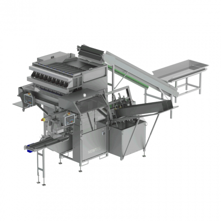 NEWTEC NBM Series Punnet and Tray Filler