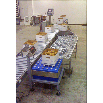 Ag-Pak In-Line Box Check Weigher